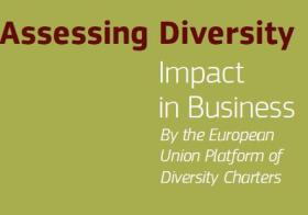 assessing diversity